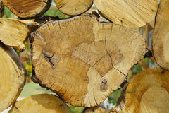 Chopped Wood and Logs Royalty Free Stock Photos