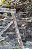 Chopped wood logs for sale. Industrial video Stock Photos