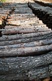 Chopped wood logs for sale. Industrial video Royalty Free Stock Image