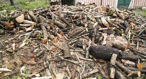 Chopped wood Stock Image