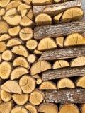 Chopped wood Pile Stock Image