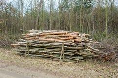 Chopped wood Stock Photos