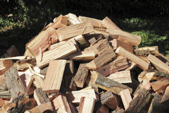 Chopped Wood Pile Outside. Many split logs drying in the sun in a shady yard Stock Images