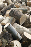 Chopped wood. A pile of chopped wood to be used in winter Stock Images