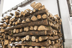 Chopped wood stock under snow Royalty Free Stock Photos