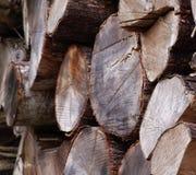 Choppeed wood Royalty Free Stock Photos