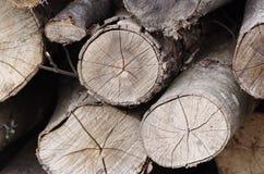 Choppeed wood Stock Photo