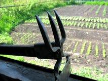 Chopper and vegetable garden Stock Photos