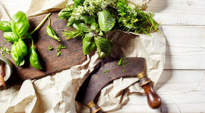Chopping assorted fresh herbs with a mezzaluna Stock Photography
