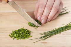 Chopping the chive Stock Photography