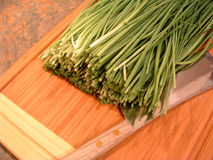 Chopping Chives. A bunch of chives and a knife on a wooden chopping board Royalty Free Stock Images