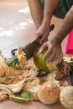 Chopping coconut by knife. Chopping coconut by big knife royalty free stock images