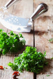 Chopping crinkly leafed parsley. With a curved blade on a grunge weathered wooden surface for use as a garnish for cooking royalty free stock image