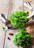 Chopping fresh parsley Stock Images