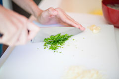 Chopping fresh parsley Stock Image