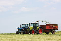 Chopping and harvesting silage Royalty Free Stock Photography
