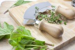 Chopping herbs Royalty Free Stock Image