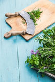 Chopping herbs Royalty Free Stock Photo