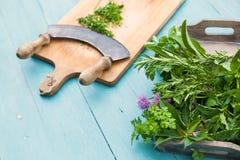 Chopping herbs Stock Photos