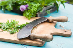 Chopping herbs Royalty Free Stock Photography
