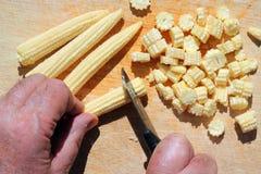 Chopping organic baby corn. Stock Image