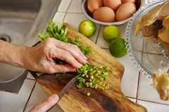 Chopping parsley. For cooking ingredient in the next step Stock Images