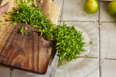 Chopping parsley. For cooking ingredient in the next step Stock Image