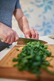 Chopping spring onions Royalty Free Stock Photography