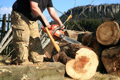 Chopping trees for firewood, country job Royalty Free Stock Image