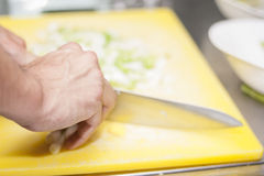 Chopping vegetables Royalty Free Stock Photos