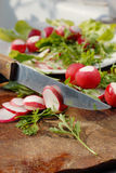 Chopping vegetables. Red garden raddish and arugula  salad chopping Stock Images