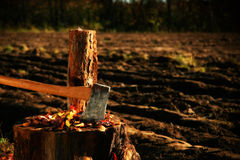 Chopping wood. With axe for winter/ Soft focus style royalty free stock photography