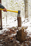 Chopping Wood Stock Photography