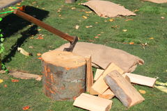 Chopping wood. Ax on the trunk Royalty Free Stock Photos