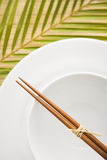 Chopsticks on an Empty Bowl Royalty Free Stock Photos