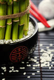 Chopsticks and a lucky bamboo plant Royalty Free Stock Photos