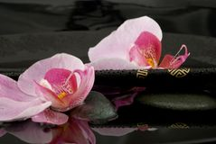 Chopsticks, Orchids and Stones Royalty Free Stock Photography
