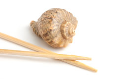 Chopsticks and shells Royalty Free Stock Photography