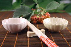 Chopsticks with two drinking bowl Royalty Free Stock Image