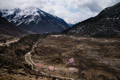 Chopta vally stock images