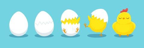 Choque da galinha Ovo rachado do pintainho, ovos do portal e ilustração chocada do vetor dos desenhos animados dos pintainhos de  ilustração royalty free