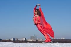 chorągwiana narciarska kobieta Zdjęcia Stock