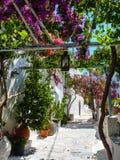 Chora la capitale de l'île d'Amorgos photographie stock libre de droits