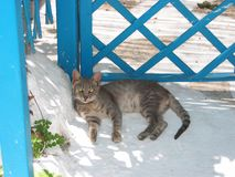 Chora town Naxos Island Cyclades Greece Stock Photo