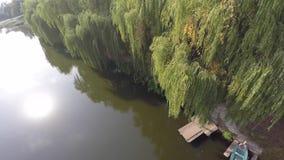 Chorando as árvores de salgueiro refletidas em um rio zangão imagem de stock