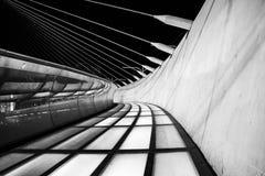 Chords Bridge in Jerusalem Stock Photography