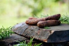 Chorizo sausage Stock Image