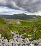 Chorna hora carpathians ukraine Royaltyfria Bilder