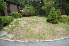 choroba trawnik przed domem Obrazy Royalty Free