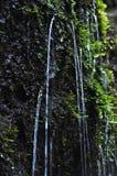Chorrito del agua de la naturaleza fotografía de archivo